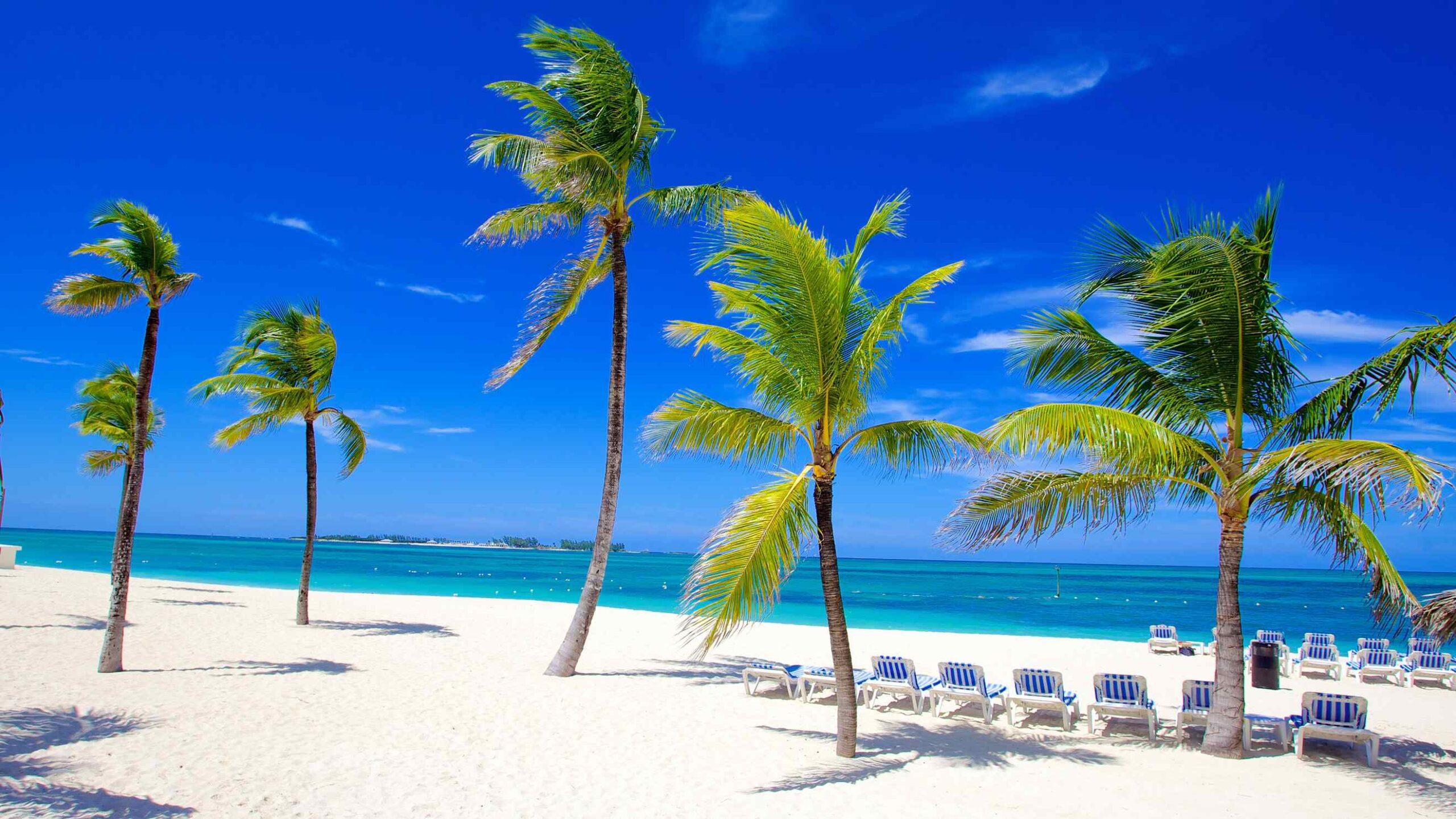 Nassau Bahamas Wayist Energy Center